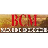 BCM gumilapátos szivattyúk